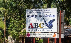 Angkor Butterfly Center